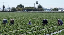 US business chiefs call for immigration reform