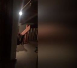 Man Shocked to Find Family of Bears in His Home: 'I Couldn't Believe What Was Happening'