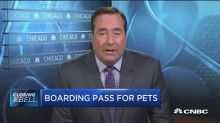 Delta tightens service animal rules