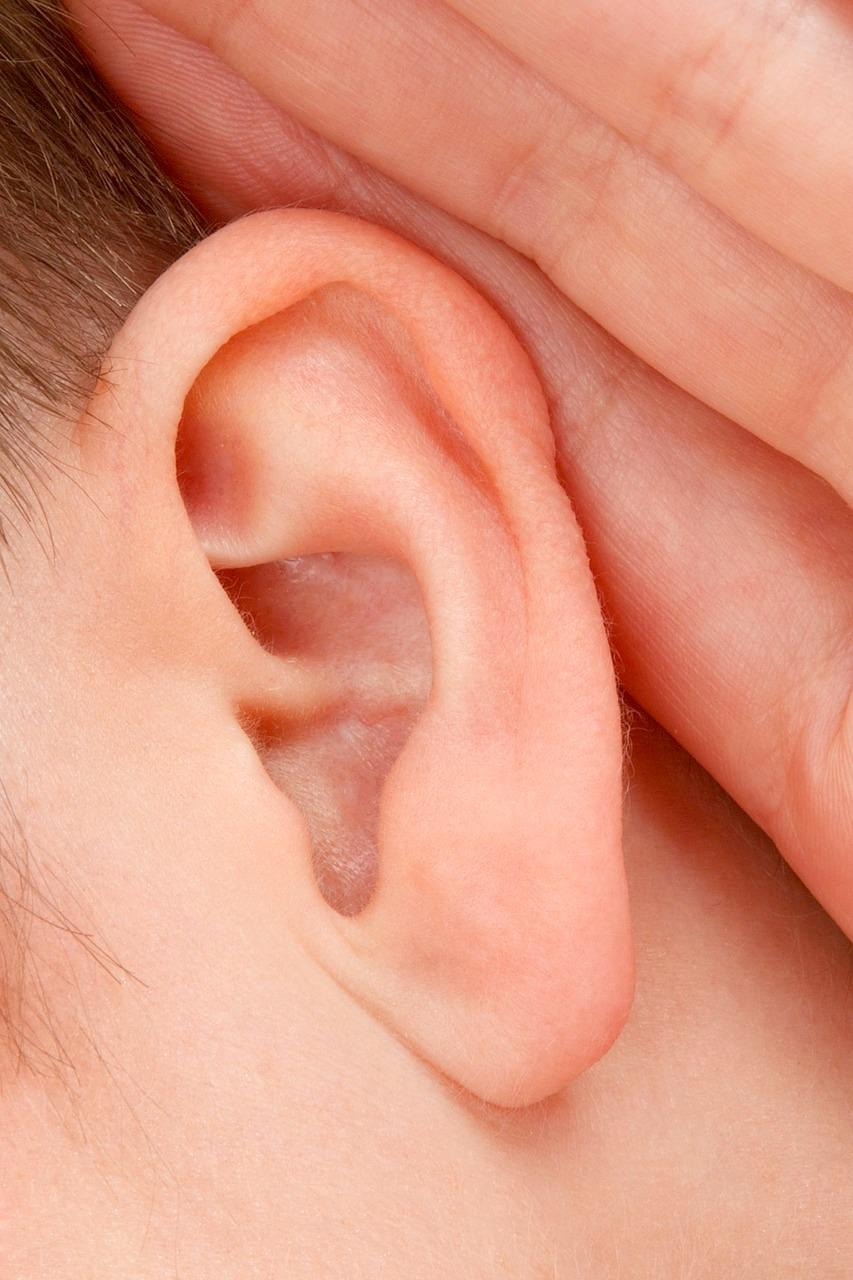 How can hearing loss be prevented?
