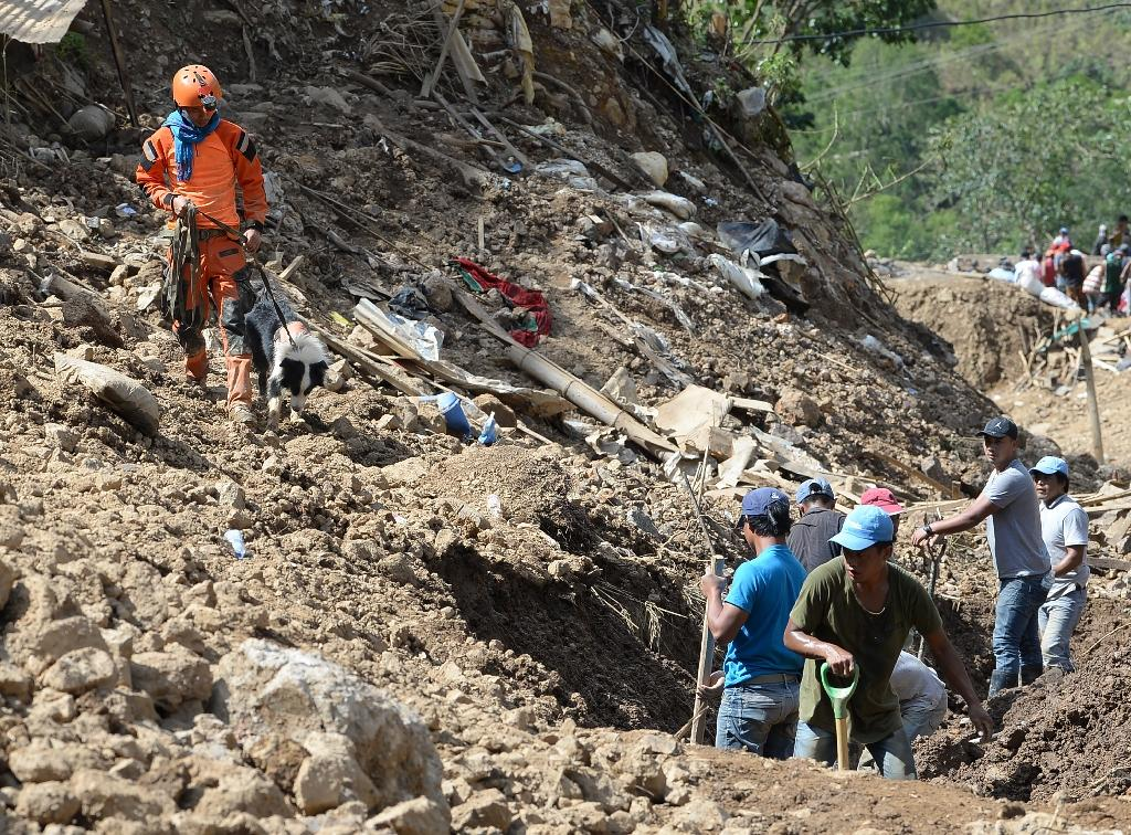 A rescuer guides his sniffer dog at the scene of the landslide in Itogon (AFP Photo/TED ALJIBE)