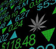 Cannabis ETF (CNBS) Hits New 52-Week High