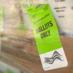 U.S. Postal Service says -- bring on the ballots, we're ready