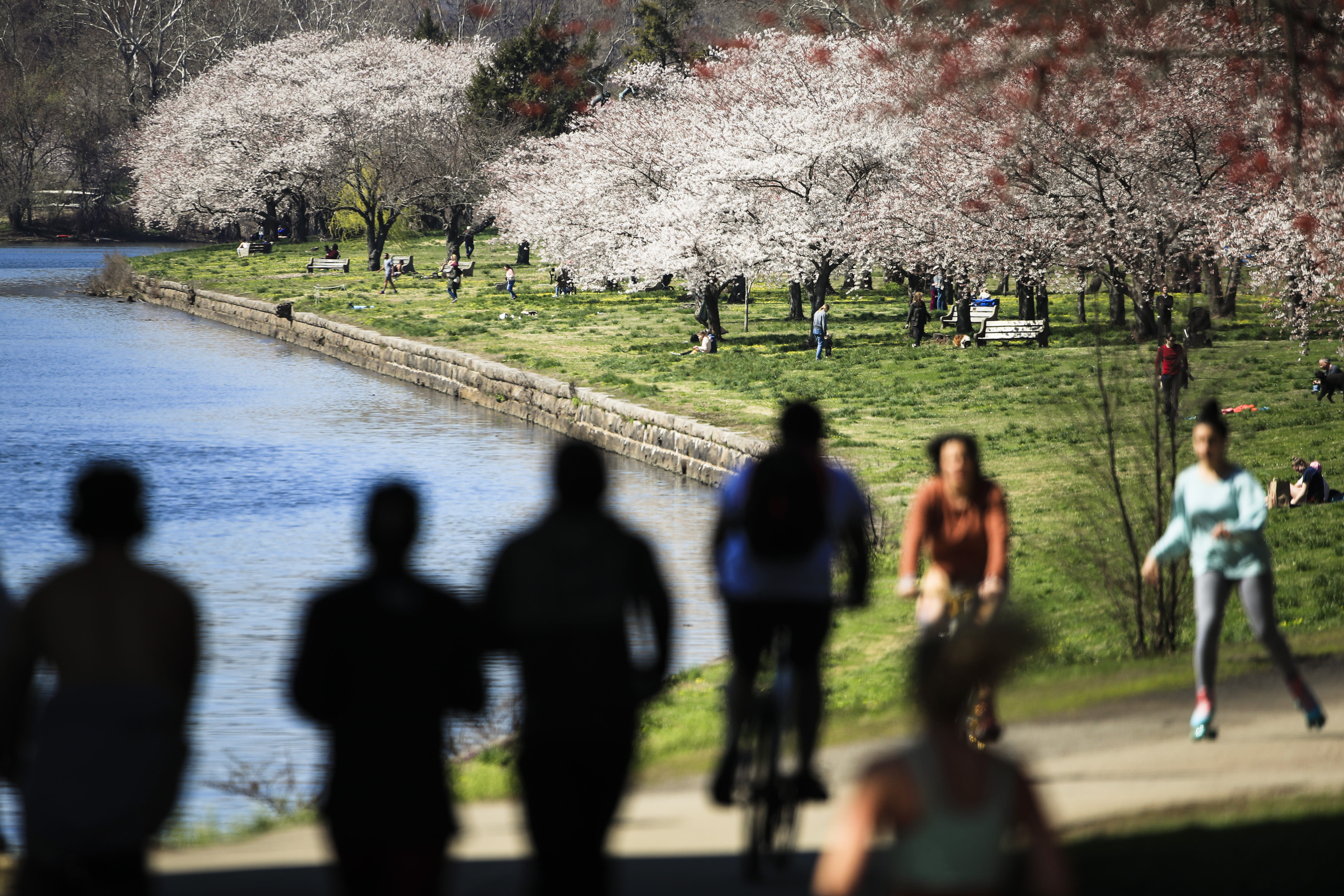 FILE - In this March 26, 2020, file photo, people exercise on the trail along Kelly Drive in Philadelphia. For millions of seasonal allergy sufferers, the annual onset of watery eyes and scratchy throats is bumping up against the global spread of a new virus that produces its own constellation of respiratory symptoms. That's causing angst for people who suffer from hay fever and are now asking themselves whether their symptoms are related to their allergies or the new coronavirus. (AP Photo/Matt Rourke, File)
