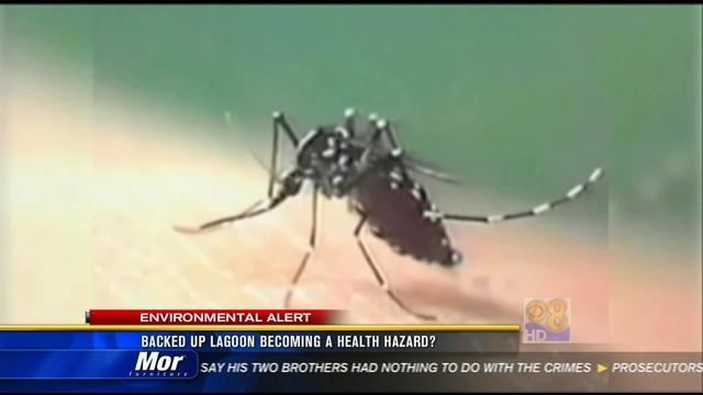 Backed up lagoon becoming a health hazard