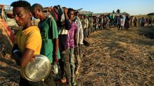 Ethiopia Tigray crisis: Fear of mass starvation
