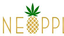 Pineapple, Inc. Files 2019 Comprehensive Annual Report