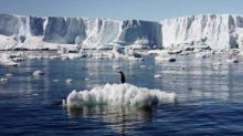 Half of Antarctica's glacier-retaining ice shelves at risk of crumbling due to climate change