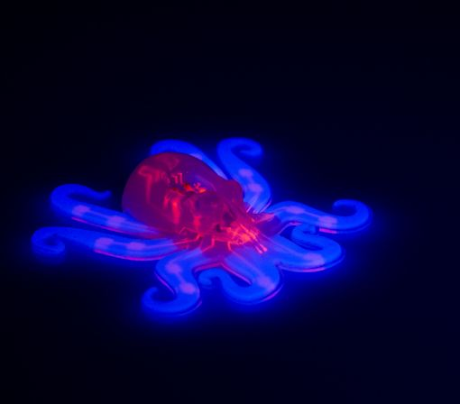 Meet Octobot, a robot that's a real softie, and cheap
