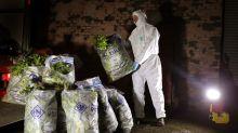 Escocia bate récord de muertes por consumo de drogas: más de 1.000 en 2018