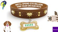 Biggest Waste of Money: Pampered Pets