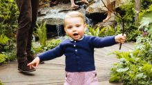 Prince Louis Is King Of The Jungle In Cute Garden Pics Of Royal Family