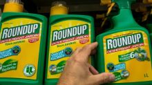MEPs urge probe into Monsanto's sway over safety studies