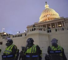 Capitol Police watchdog says force needs 'cultural change'