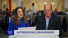 Autodesk Falls On Earnings