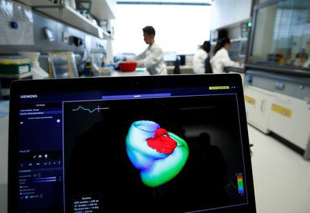 FILE PHOTO: A monitor shows a three-dimensional image of a human heart at the Klaus-Tschira-Institute for Integrative Computational Cardiology, department of the Heidelberg University Hospital (Universitaetsklinikum Heidelberg), in Heidelberg