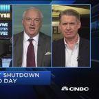 Shutdown isn't that material for the market: Strategist