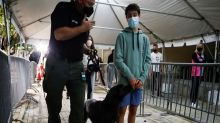 Switzerland trains sniffer dogs for detecting COVID-19