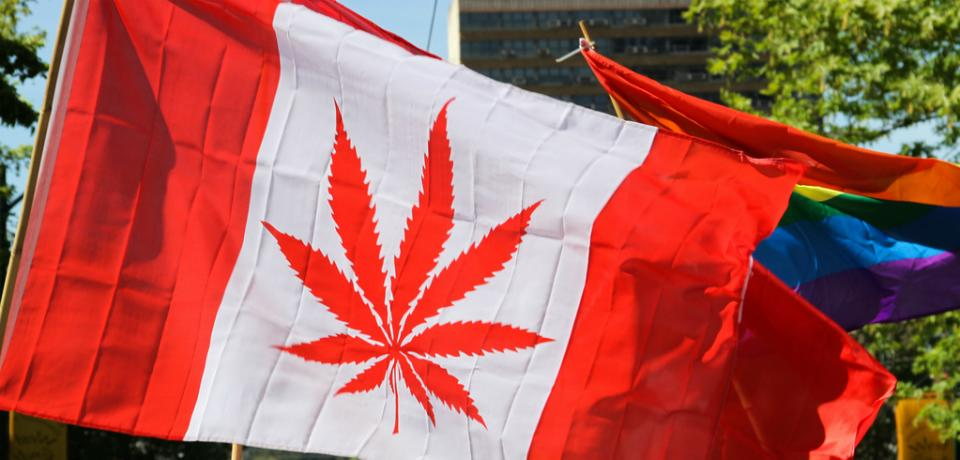 legalization of cannabis in canada essay Why canada should legalize marijuana by: , and forgetting the fact that if you were to legalize marijuana  legalizing marijuana.