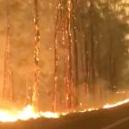 Homes Feared Lost as Bushfires Flare on New South Wales South Coast