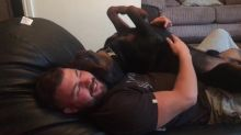 Rottweiler Purrs And Gives Kisses During Cuddling Time With Owner