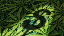 Canopy Growth Was Flying High in Q3 With 283% Revenue Jump