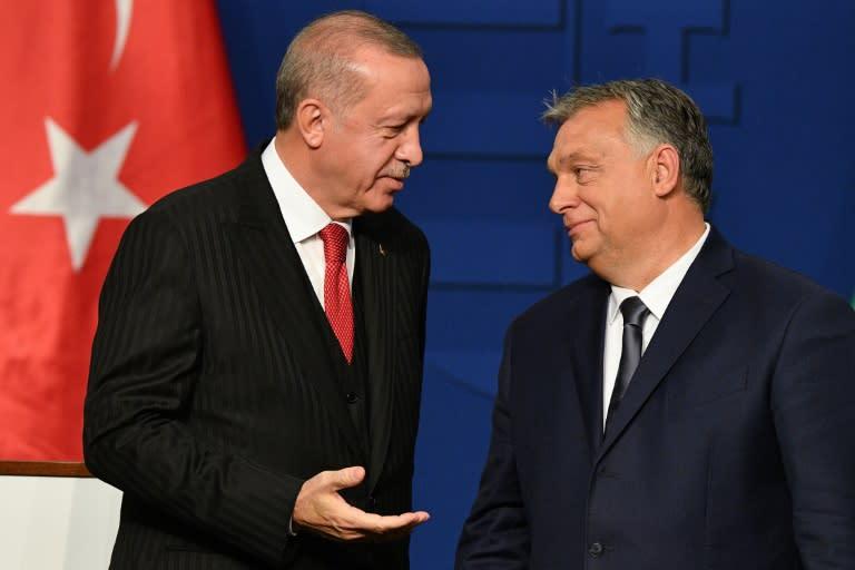 Turkish President Recep Tayyip Erdogan (L) held talks with Hungarian Prime Minister Viktor Orban