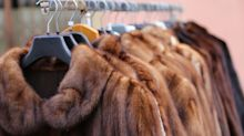 California Becomes First State To Ban The Sale Of Fur Products