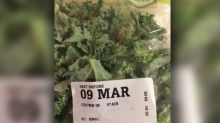 Mum's disgusting find in packet of supermarket kale her family ate