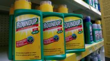 U.S. judge to allow controversial evidence in Roundup cancer trials