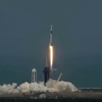 Elon Musk's SpaceX rocket launches into space