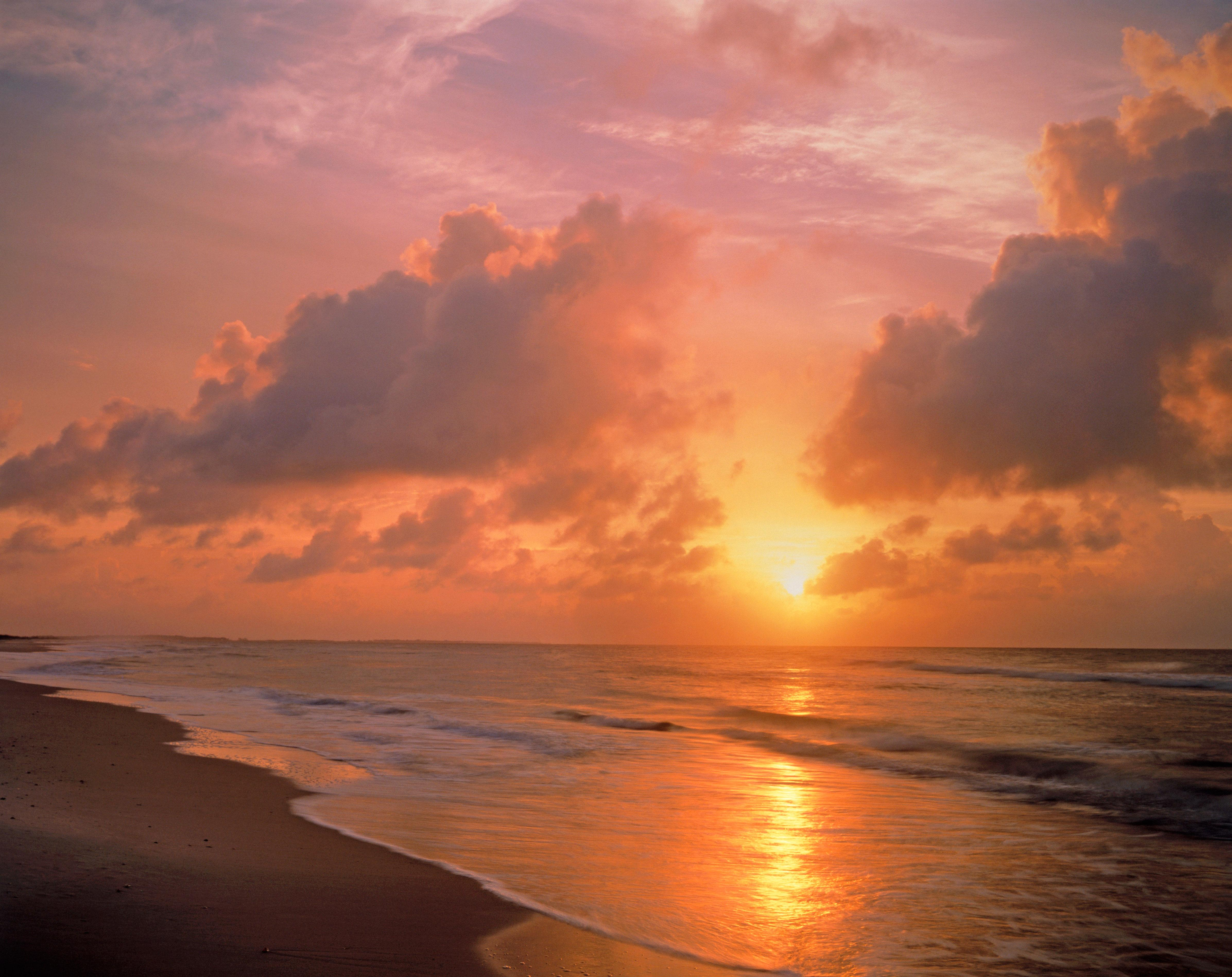 """<p>With nine miles of some of the most pristine beaches along Florida's Gulf Coast, <a href=""""https://www.floridastateparks.org/park/St-George-Island"""" rel=""""nofollow noopener"""" target=""""_blank"""" data-ylk=""""slk:St. George Island State Park"""" class=""""link rapid-noclick-resp"""">St. George Island State Park</a> is a natural beauty and a haven for lots of happy locals, including a bevvy of birds: terns, plovers, herons, black skimmers, sandpipers, osprey, and bald eagles; and a wealth of fish: flounder, redfish, sea trout, pompano, whiting, and Spanish mackerel. These native inhabitants—and the bay's perfect setting for canoeing and kayaking (you can rent boats from the ranger station)—make the park a must-visit for nature enthusiasts. The 1,962-acre park features a 2.5-mile trail that meanders through pine flatwood forest and ends at the bay. Sixty campsites with water and electricity hook-ups, as well as covered pavilions with grills, are located in the main campsite area, while tent camping is available at the end of a 2.5-mile nature trail.</p>"""