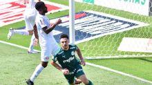 Palmeiras x Sport: prováveis escalações, onde assistir e desfalques