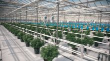 Canopy Growth Production Footprint Increases with Further Tweed Farms Licence Expansion