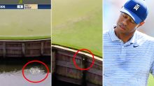 Tiger Woods suffers never-before-seen meltdown on nightmare hole