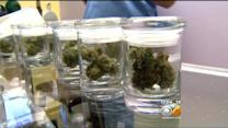 Denver Police Warn Pot Businesses Of Robbery Plots