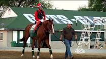 Kentucky Derby Win Changes Lives Of NorCal Owners Of California Chrome