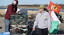 What's behind the violent dispute over a N.S. lobster fishery