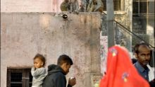 Baby nach Affenraub in Taj-Mahal-Stadt Agra gestorben