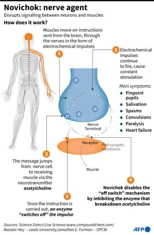 Novichok: nerve agent