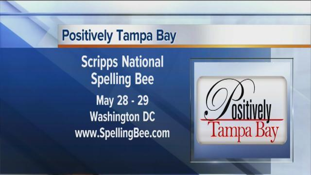 Positively Tampa Bay: Spellbound