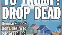 New York Daily News Reworks Iconic Headline To Mock Trump's Greenland Idea