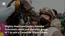 One-Eyed Horse Could End Canada's Racing Drought