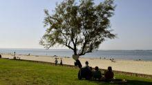 Coronavirus: une fête organisée sur une plage d'Arcachon interrompue par la police