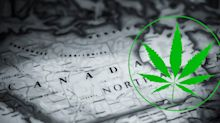 Why Is Everyone Talking About Aurora Cannabis?