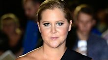 Pregnant Amy Schumer cancels show after being taken to hospital with nausea