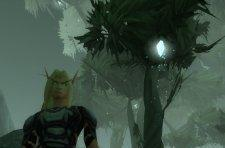 Curse offers hints on expansion World PVP