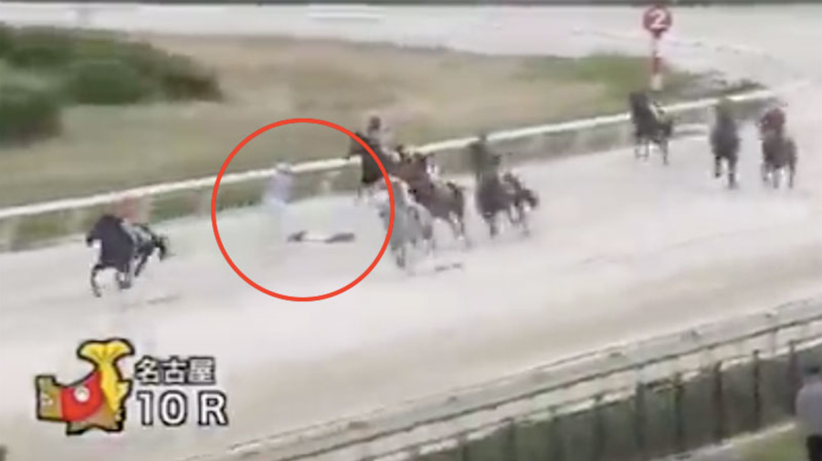 Distressing scenes as horse race continues around unconscious female jockey