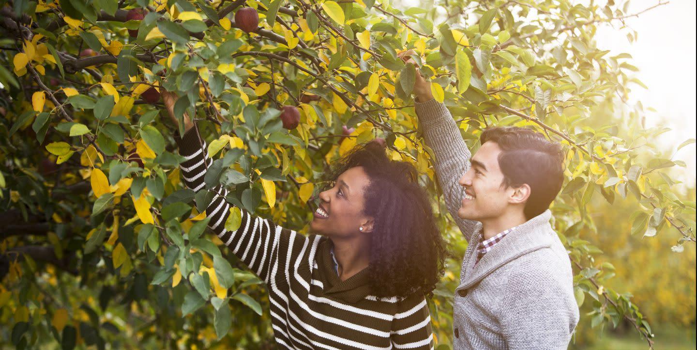 40 Romantic Fall Date Ideas to Plan ASAP