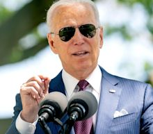 Joe Biden's income fell sharply during presidential campaign